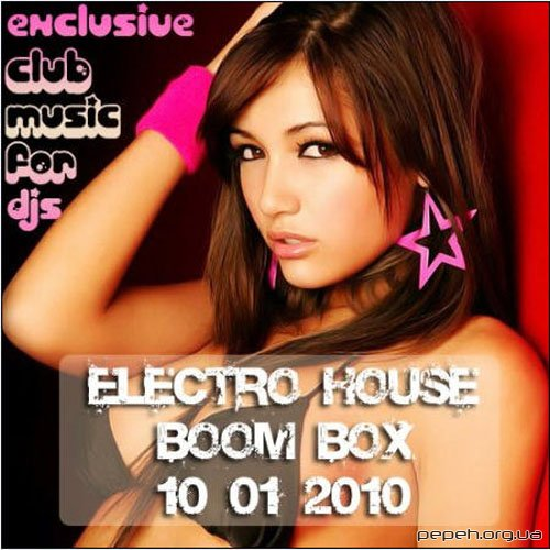 VA-Electro-House Boom BOX (10.01.2010)