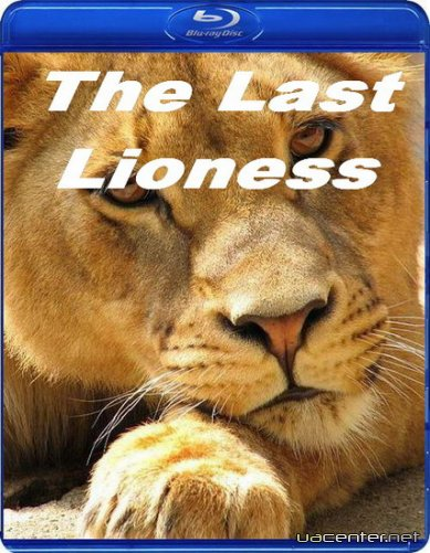 National Geographic: Остання левиця / The Last Lioness (2010) HDTVRip 720p