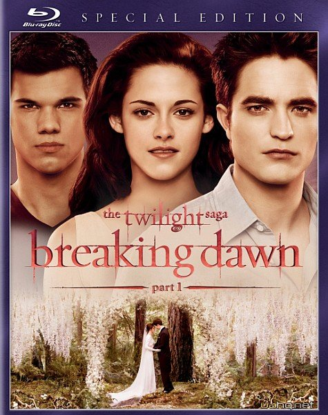 Сумерки. Сага. Рассвет: Часть 1 / The Twilight Saga: Breaking Dawn - Part 1 (2011/HDRip/2100Mb/1400Mb/700Mb)
