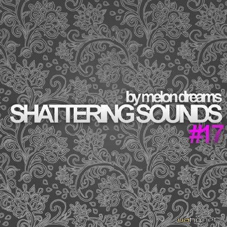 Shattering Sounds #17 (2012)