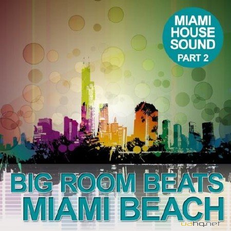 Big Room Beats in Miami Beach (Part 2)(2012)