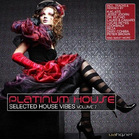 Platinum House, Vol. 7 (Selected House Vibes) (2012)