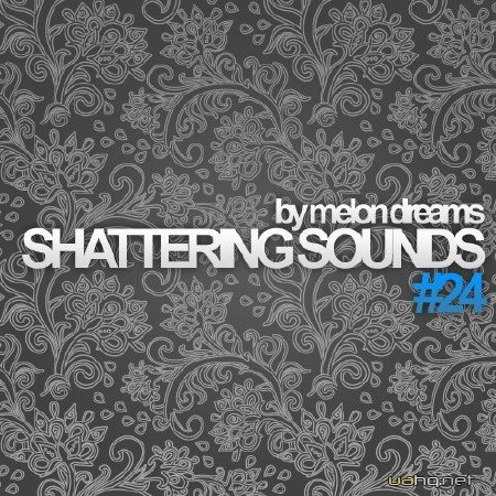 Shattering Sounds #24 (2012)