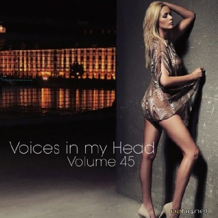 Voices in my Head Volume 45 (2012)