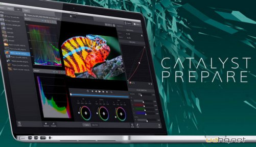 Sony Catalyst Prepare 1.1.0.79