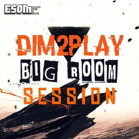 DIM2PLAY - Bigroom session level 1 (2015)