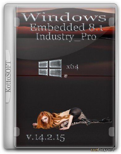 Windows Embedded 8.1 Industry Pro KottoSOFT v.14.2.15 (x64/2015/RUS)